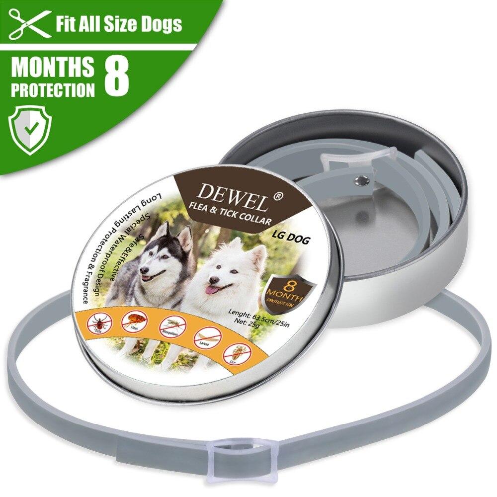 Dewel verão anti-inseto gato cachorro colar anti pulgas mosquitos carrapatos gato à prova dwaterproof água coleira para animal de estimação 8 meses proteção