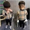 2015 outono e primavera criança bonito roupas de Bebê menino grade zipper conjunto cardigan criança meninos e meninas de manga comprida terno