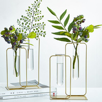 Nordic ins Gold Iron Art Transparent Glass Tube Hydroponic Vase Desktop Plant Flower Pot Indoor Planters Garden Decoration Vases