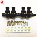 High quality CNG LPG gas Injector Rail 2/3 Ohms for 4cylinder Sequential System Common Injector Rail & accessories