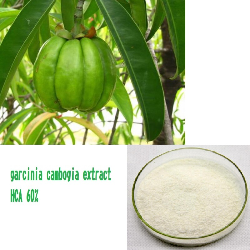 1kg garcinia cambogia extract HCA 60% Hydroxycitric Acid garcinia cambogia extract powder 99% 1000g weight loss relieve pressure get a better sleep hot sale free shipping