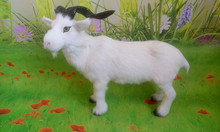 large 38x30cm simulation goat model toy polyethylene & furs sheep hard model,props ,decoration gift t359