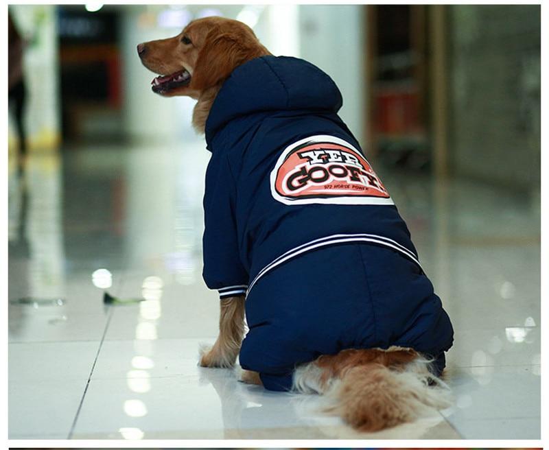 Warm dog clothes (6)