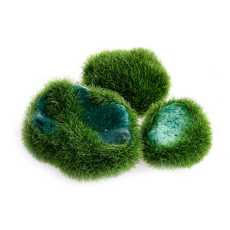 5pcs Green Artificial Moss Stones Grass Plant Poted Home Garden Decor  Landscape(China)