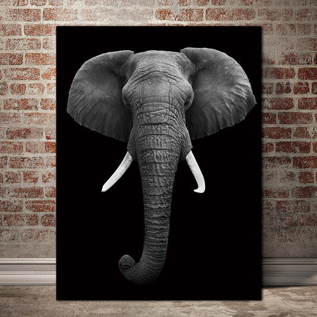Black and White Animal Wall Art By Rebe Home