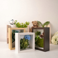 Home Decor Photo Frame High Quality Picture Frame Rectangle Specimen Dried Flowers Photo Frame Anniversary Gift