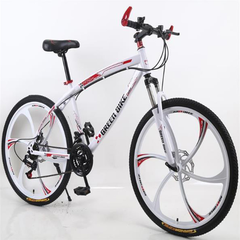 Variable Speed Mountain Bike 21 Speed 26 Inch Dual Shock Absorption Adult Off-road Bicycle