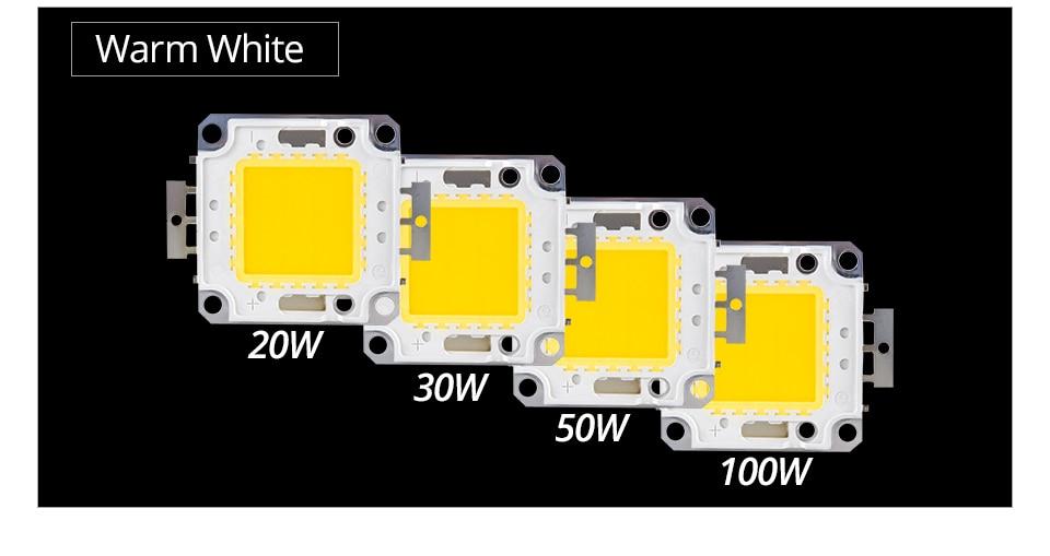 LED Chip 12V 10W 30V-36V 20W 30W 50W 100W Integrated COB LED Beads DIY Floodlight (5)