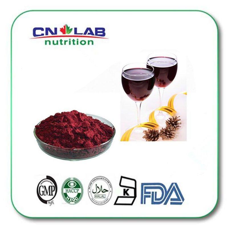 1000g Anti aging new arrival 40% polyphenols red wine extract powder / GMP High Quality Natural Red Wine Extract Powde hot sale