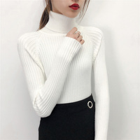 Hitz Korean stretch slim sleeve head sweater color all-match thick warm turtleneck sweater female backing