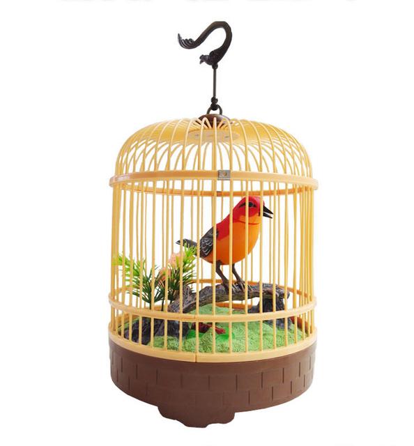 Crianças elétrica acústica pequena gaiola acústico brinquedo elétrico música brinquedo brinquedo papagaio vai chamar o movimento