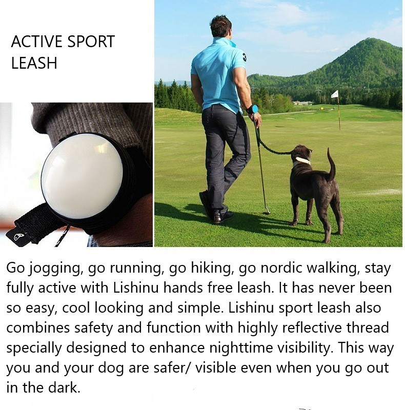 2019 New Pet Dog Jogging Running Sport World's 1.ST Intelligent Hands Free Retractable Dog Leash