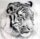 Tiger Diy Diamond pa...