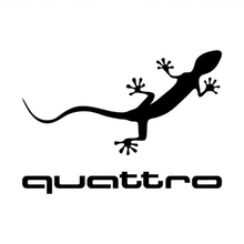 цена на Gecko Car Sticker Motorcycle SUVs Bumper Car Window Laptop Car Stylings Vinyl Decals