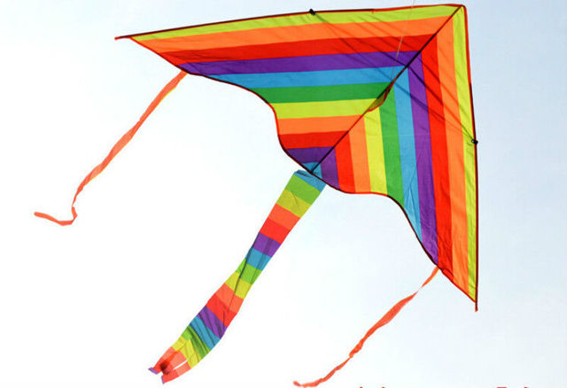 1m Rainbow Tail Triangle Kite Ripstops Easy Fly Children Gentle
