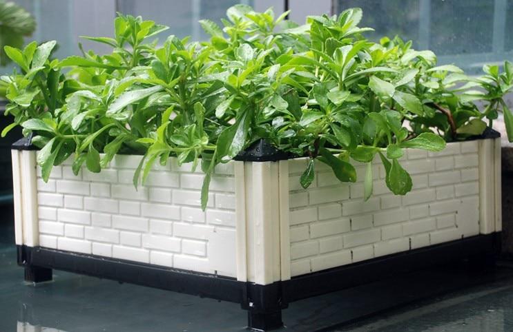 1 set 3 groups green garden planter DIY grow vegetable flower plants ...