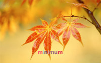 High Quality Gift DIY 5D Diamond Painting Red Maple Leaves Cross Stitch Beautiful Scenery