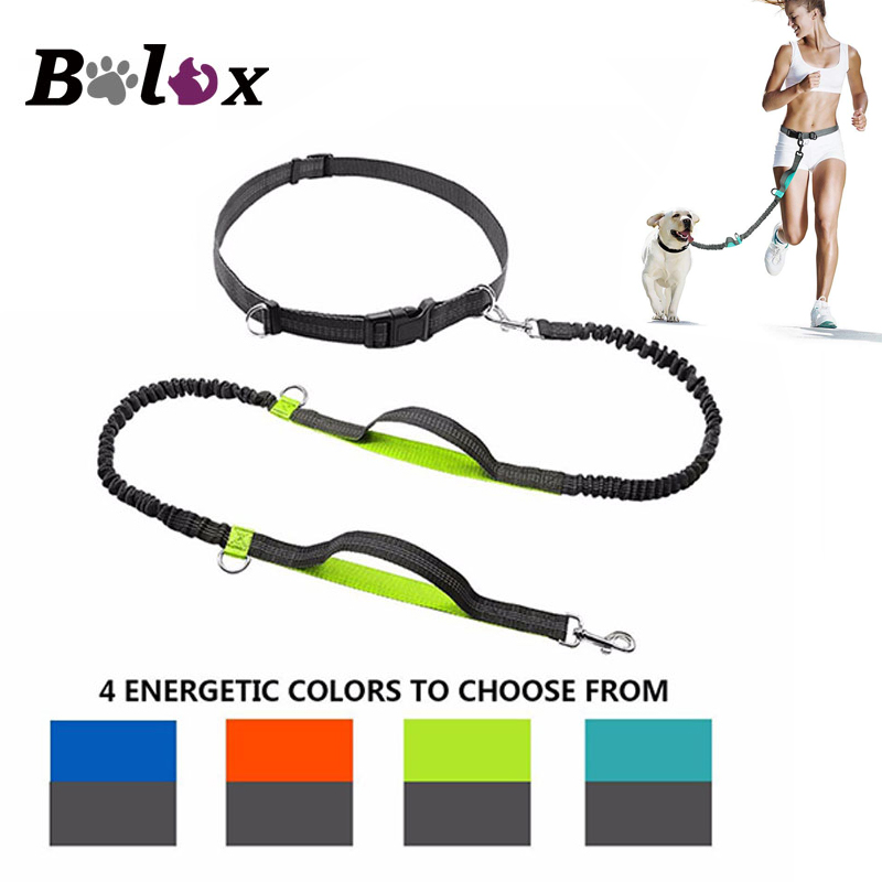 Dog Leash Dual Handle Hands Free Running Leash Shock Absorbing Extendible Bungee Reflective Stitching Adjustable Waist