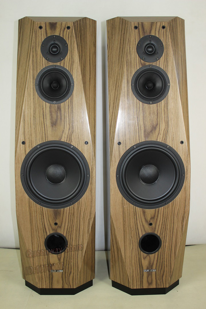 QT 10 10 inches Hi End floor standing speaker Scan Speak ...