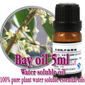Free shopping 100% pure plant water soluble essential oils laurel oil Aromatherapy bath dedicated bay oil High-quality