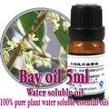 Free shopping 100% pure planta solúvel em água óleos essenciais aromaterapia óleo de louro óleo de banho dedicado baía de alta qualidade