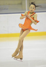 Adult Figure Ice Skating Dresses With Spandex Graceful New Brand Figure Skating Competition Dress DR4029