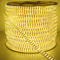 180led/m 220V 2835 smd led strip light 50m warm white/ White led rope waterproof outdoor +power adapter Double Row Wholesale