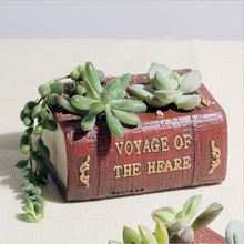 Buy free books pot and get free shipping on AliExpress.com Dry Garden Design With Pot Html on herb gardens designs, potted plant designs, flower pot designs, pot people designs, pinch pot designs, potted vegetable garden designs, diy garden designs, dish gardens designs, box gardens designs, water garden designs, indoor garden designs, mosaic pots designs, garden planters designs, garden trellis designs, rock gardens designs, stone gardens designs, patio pot designs, container gardens designs, garden gate designs, flower garden designs,