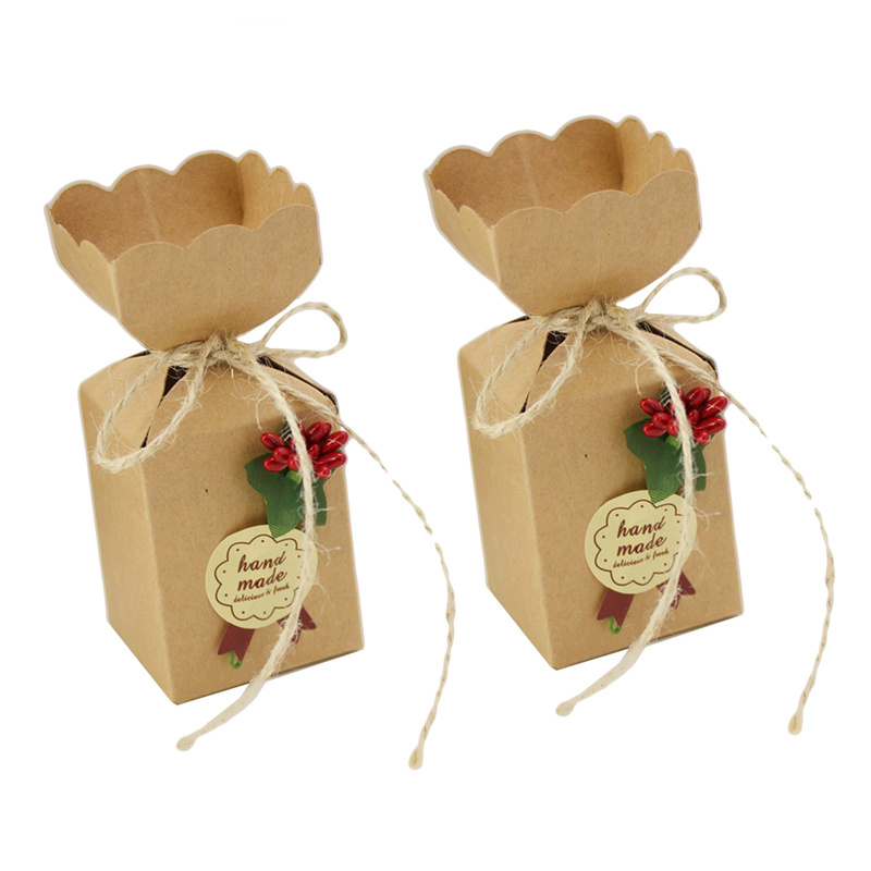 5-50Pcs Christmas Gifts Bags Boxes Party Favours Sweet Biscuit Candy Treat Pack