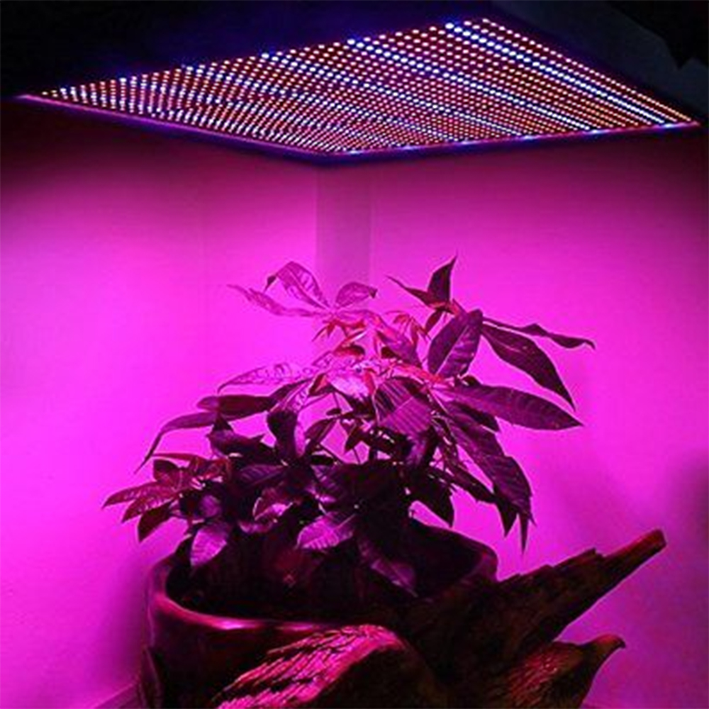 ФОТО 120W Grow Light Panel Light Hydroponics Lamps AC85-265V SMD3528 Red+Blue For Flowering Plant Indoor Grow Tent Led