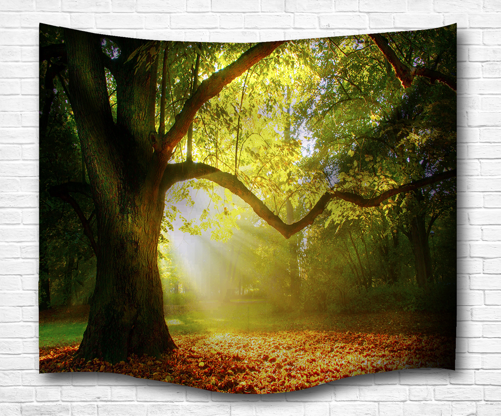 Dawn trees Indian Mandala Tapestry Pretty Wall Hanging Tapestries ...