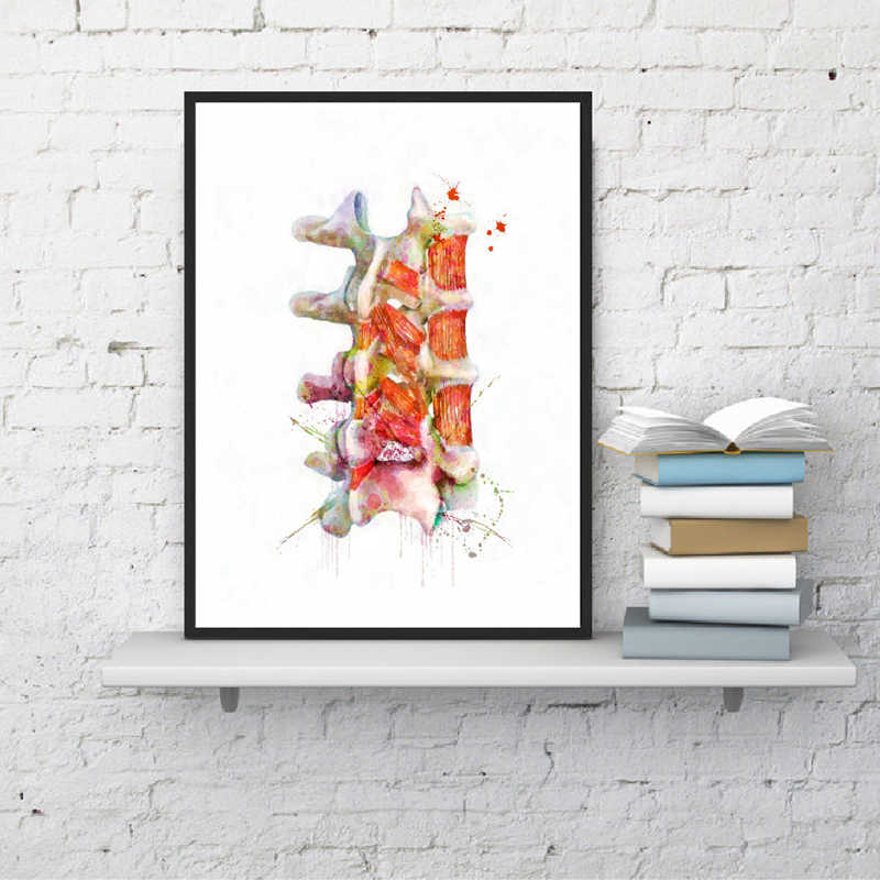 Human Spine Wall Art Canvas Poster Prints Neurology Art Anatomy Watercolor Picture Painting Clinic Doctor Office Wall Decor