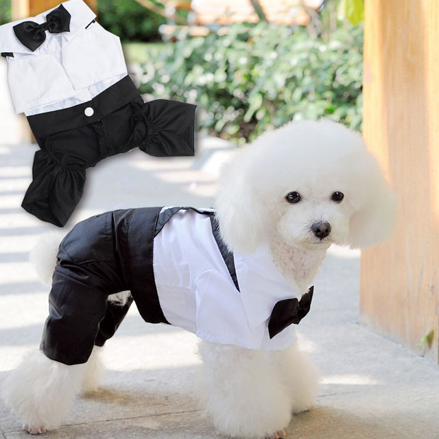 Handsome Pet Dog Wedding Dress Clothes for small dog Suit Puppy ...