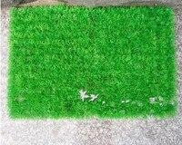 Plastic Turf Decoration 40 60cm Double Layer Encryption Money Grass