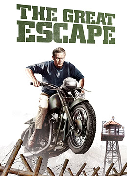 《大逃亡》1963年美国剧情,历史,冒险电影在线观看