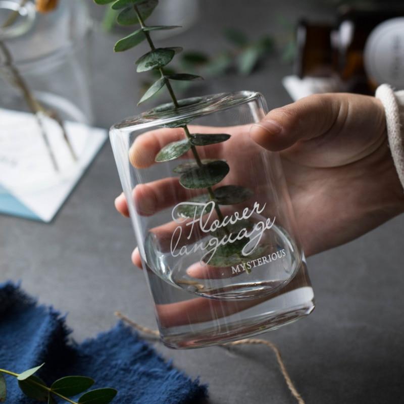 Hydroponic Transparent Flower Vase - Home & Garden