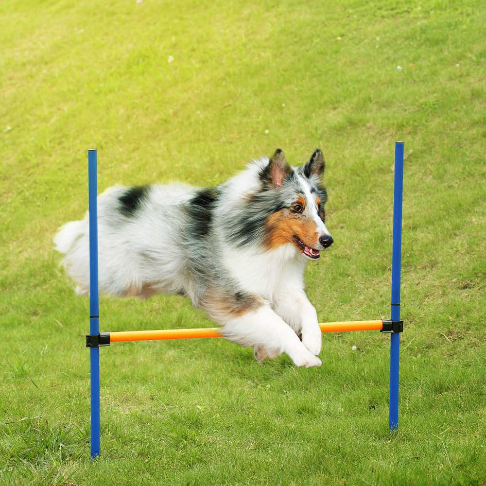 Outdoor Pet Dog Agility Sports Games Training Equipment Dogs Jump Hurdle Activity Agility Exercise Pole Set with Carrying Case