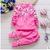 2016 Nuevo algodón del otoño de los niños la ropa del bebé infantil niños niñas Bordado trajes shirt + pants juegos de roupas de bebe