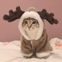 Winter Cat Clothes Warm Fleece Pet Costume For Small Cats Kitten Jumpsuits Clothing Cat Coat Jacket Pets Dog Clothes