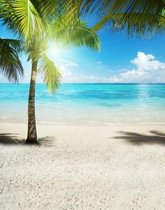 10x10ft Palm Tree Shadow Sand Shore Beach Summer Sea Wave