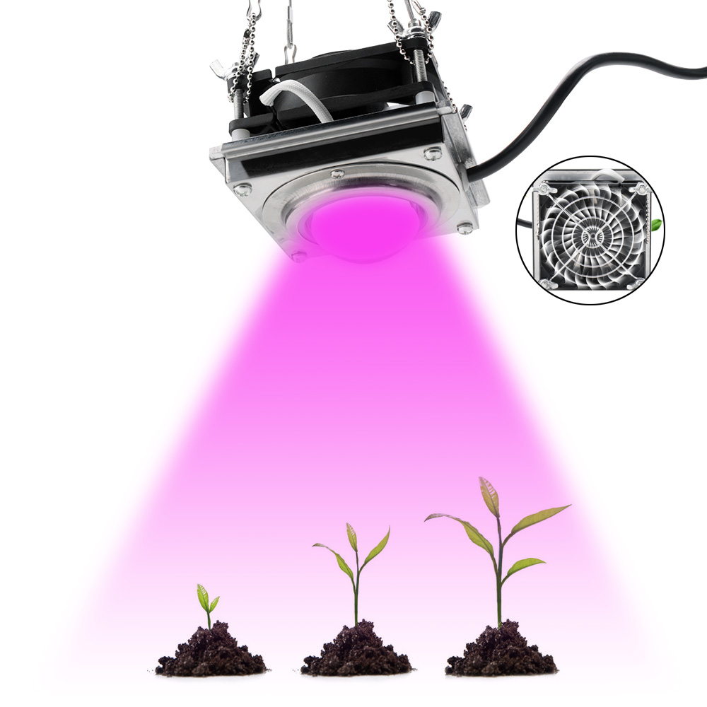 BORUiT AC90-265V 50W LED Grow Light 4000K Full Spectrum Phyto Lamp Heat Sink Fitolampy For Indoor Hydroponic Plant