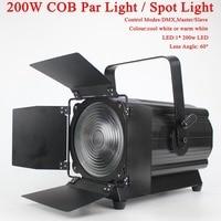 2018 NEW COB 200W LED Par Light High power LED energy efficient for Disco DJ Spot Light Party stage light