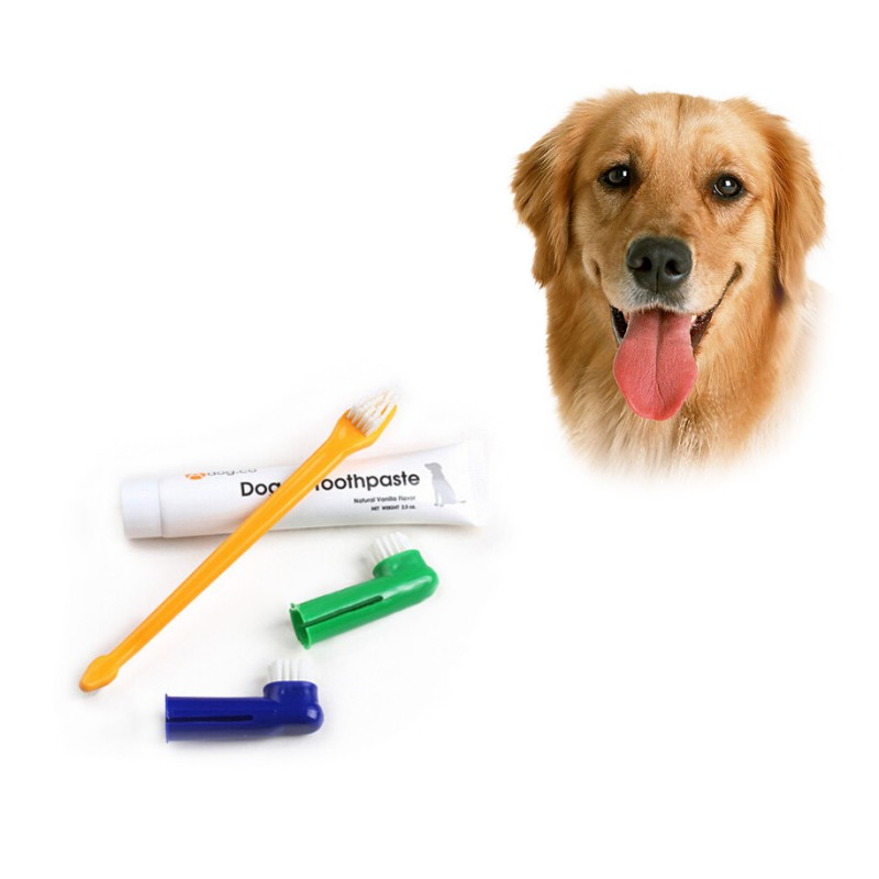 New Pet Toothbrushes Set Dog Puppy Cat Toothbrush 1pcs Flavour Toothpaste +1pcs Two-head Toothbrush+2pcs Brush Head image
