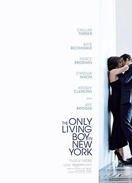 《纽约唯一活着的男孩》2017年美国剧情电影在线观看