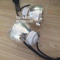 Ersatz Ursprüngliche Projektorlampe POA-LMP143 für SANYO DWL2500  DXL2000  PDG-DXL2000E  PDG-DWL2500  PDG-DXL2000  SANYO PDG-DXL2500