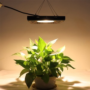 Image 5 - Phyto Đèn 50W 100W 150W Phát Triển COB Vỏ Suốt IP67 Chống Nước Trắng Ấm Phát Triển LED cho Phát Triển Lều Thực Vật Phát Triển