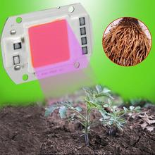 LumiParty 110V 220V COB LED Chip Phyto Lamp Full Spectrum 20W 30W 50W LED Diode Grow Lights Fitolampy for Indoor Seedlings