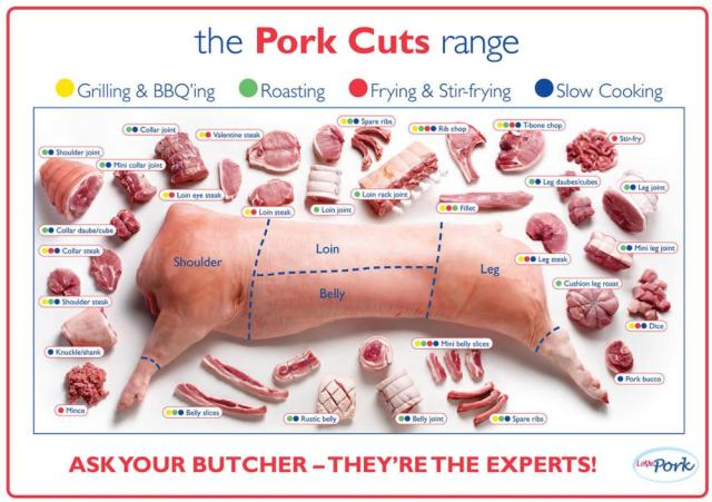 Pork Cuts Pig Diagram Poster High Quality Canvas Oil