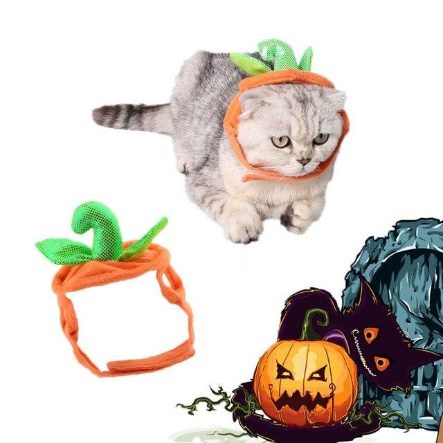 Nieuwe Caps Voor Kat Hond Verjaardag Cap Hoed Halloween Pompoen