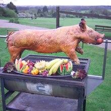 Свиная гриль двигателя сверхмощный-80 кг нагрузки Нержавеющая сталь свинья вертел мотор